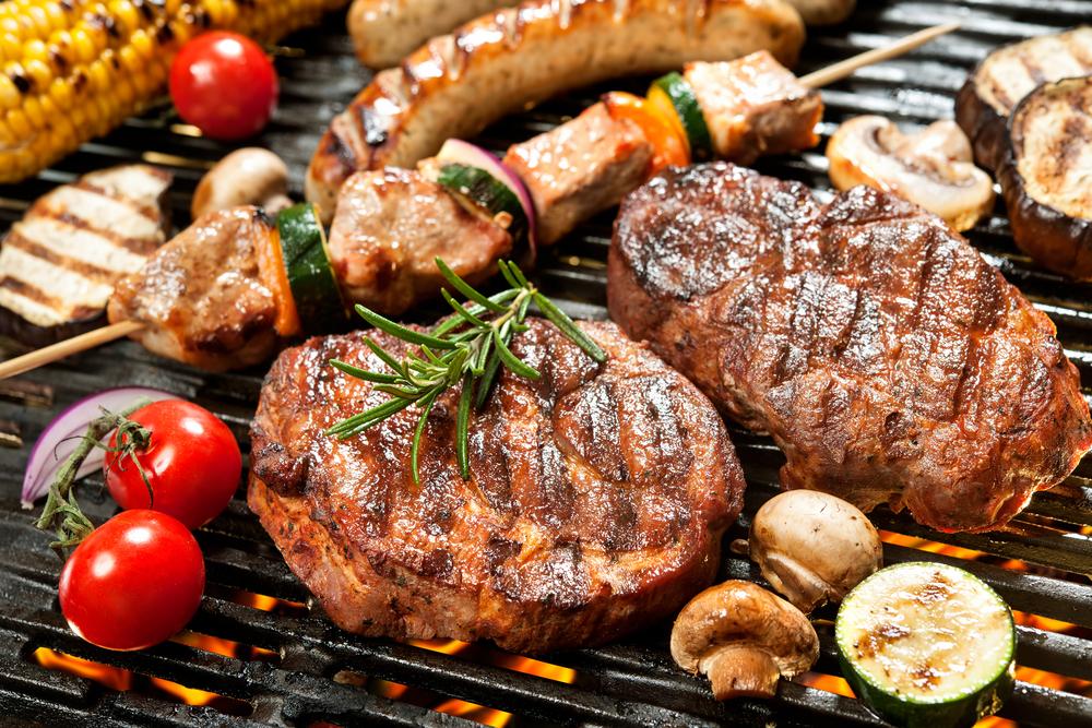 carnivore diet niche