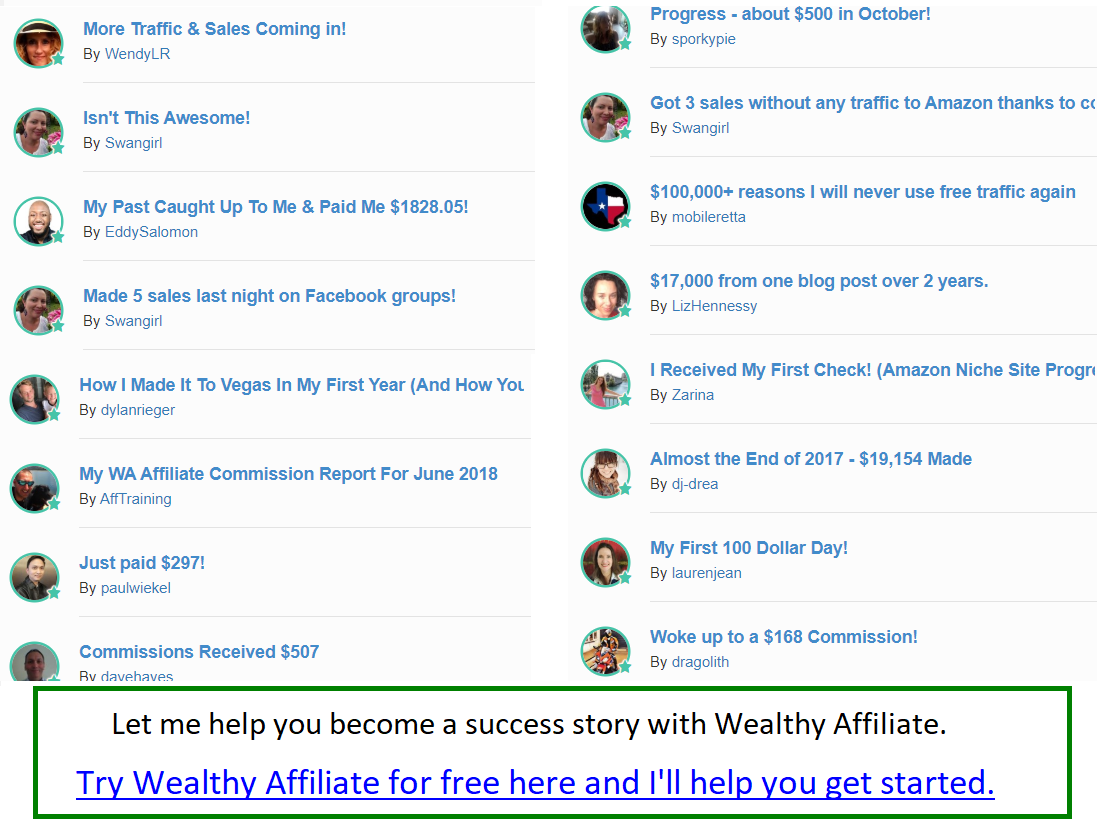 wealthy affiliate member results screenshot