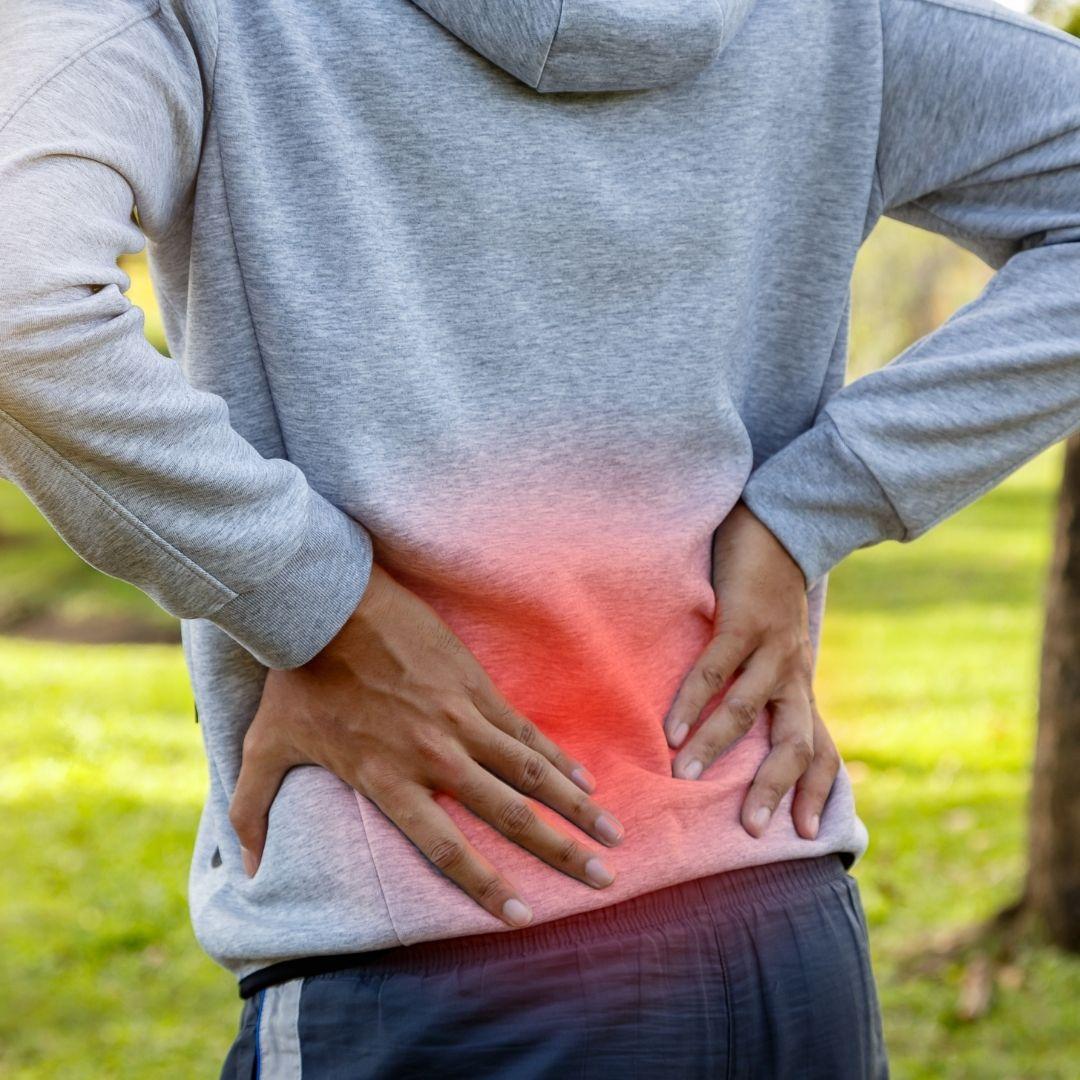 lower back pain evergreen niche